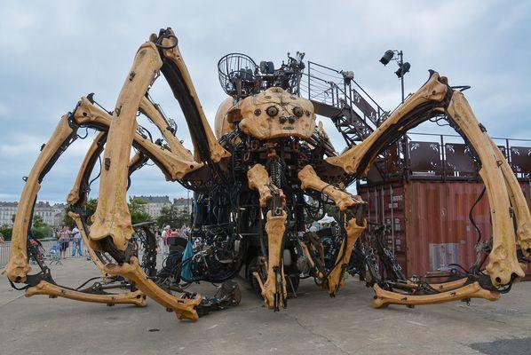 L'araignée de Nantes