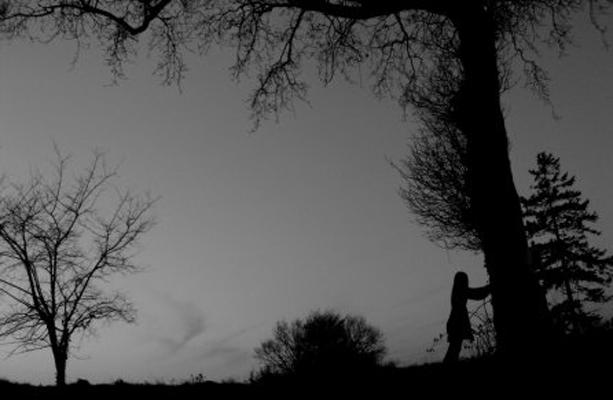 L'arbre penchant