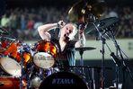 Lars [ Metallica ]