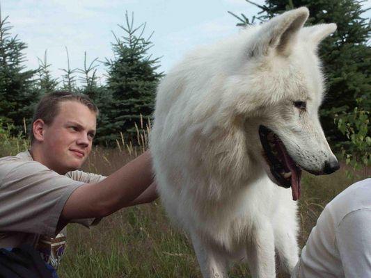 Lars mit dem Wolf !