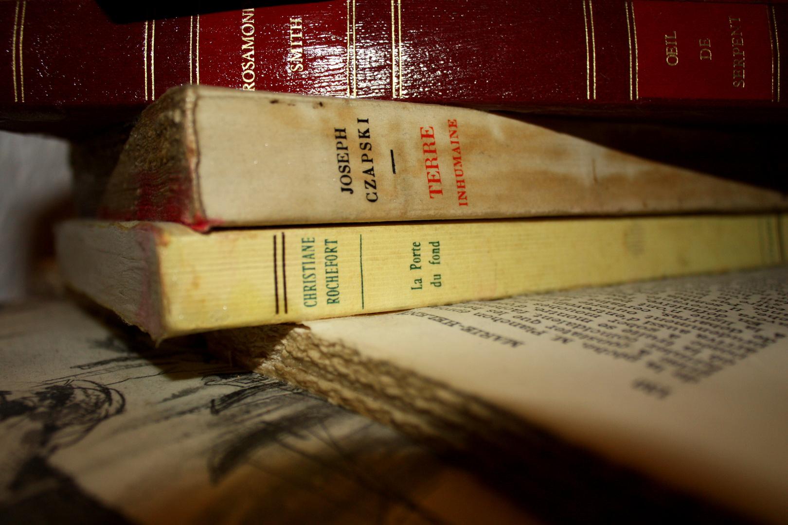 """""""L'art de lire c'est l'art de penser avec un peu d'aide"""" Emile Faguet."""