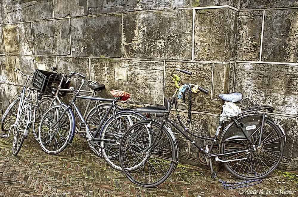 ...las bicicletas 2...