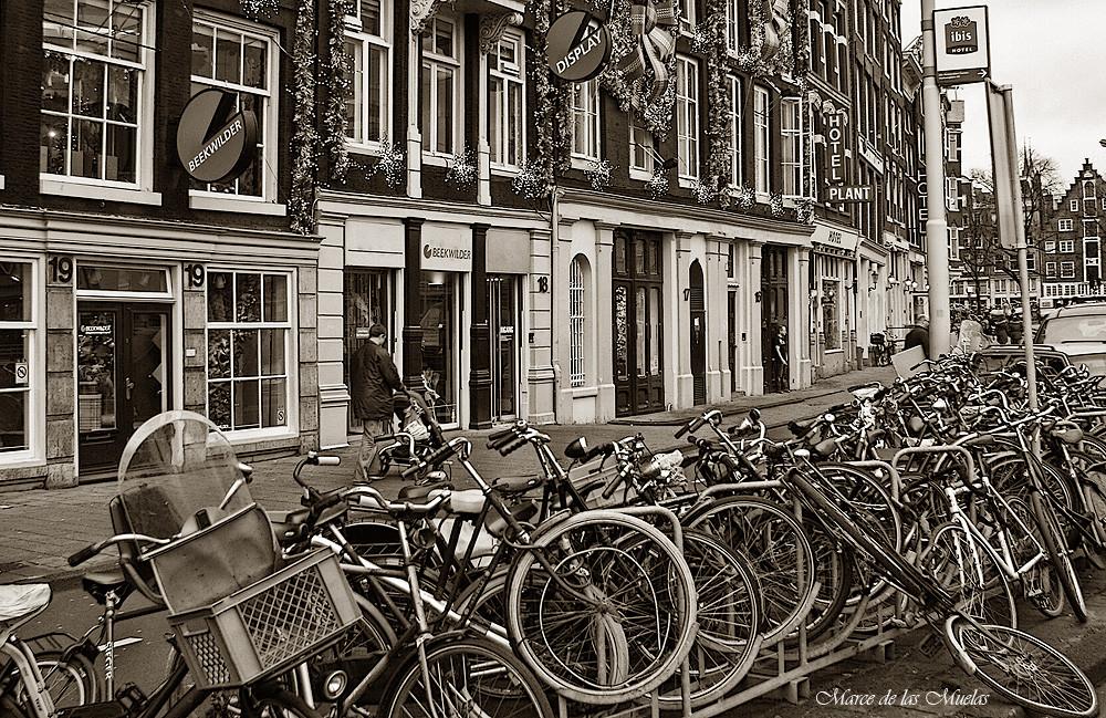 ...las bicicletas...