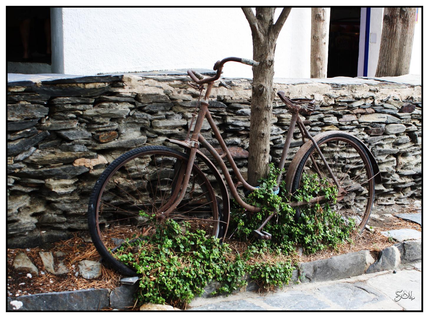 Las bicicletas son para el verano.