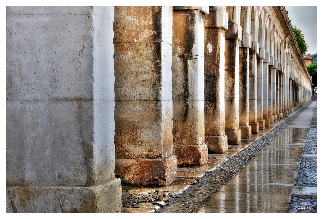 Las columnas