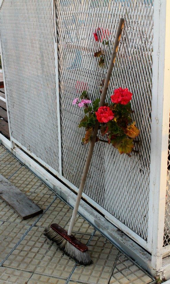 Las flores también barren
