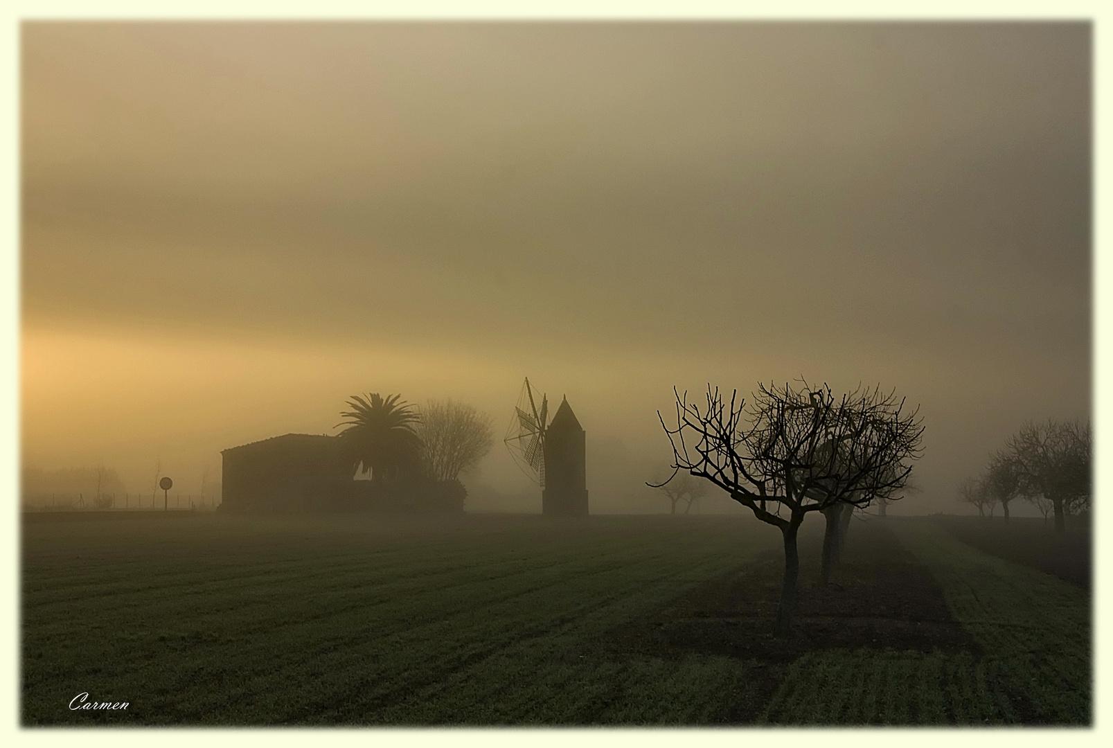 Las nieblas de mi pueblo