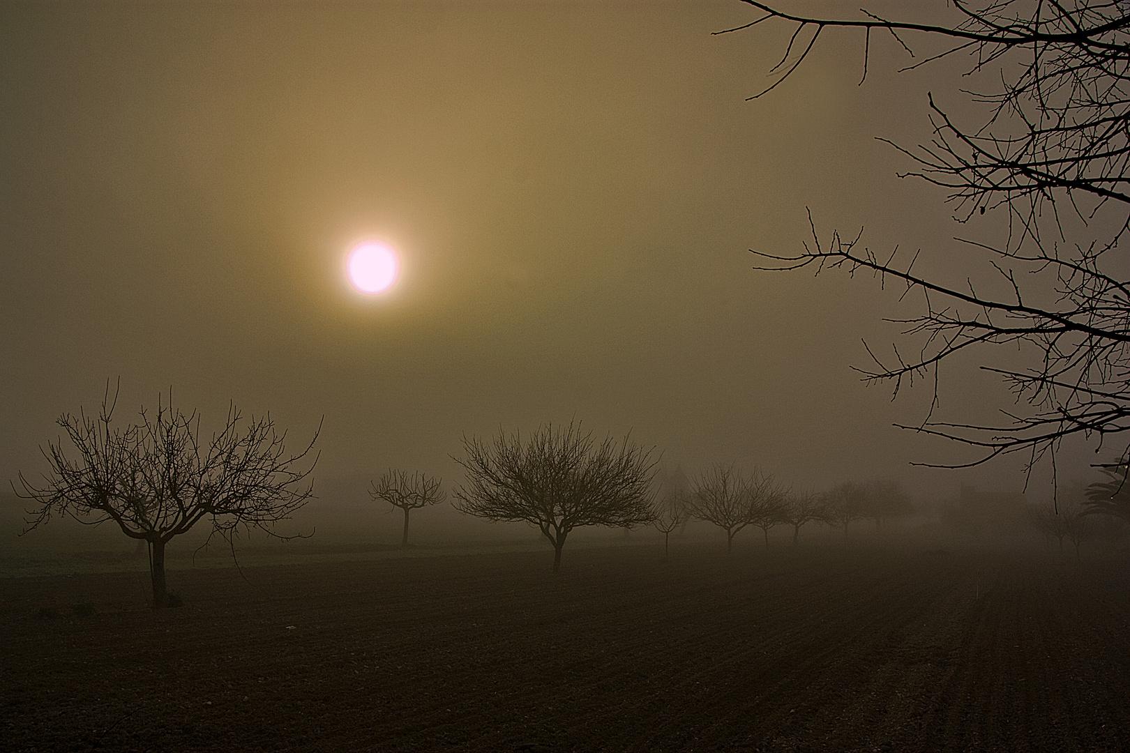 Las nieblas de mi pueblo (DEDICADA A MARCE DE LAS MUELAS)