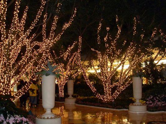 Las Vegas , Bellagio Hotel