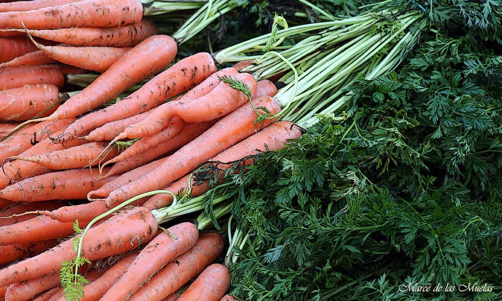 ...las zanahorias...