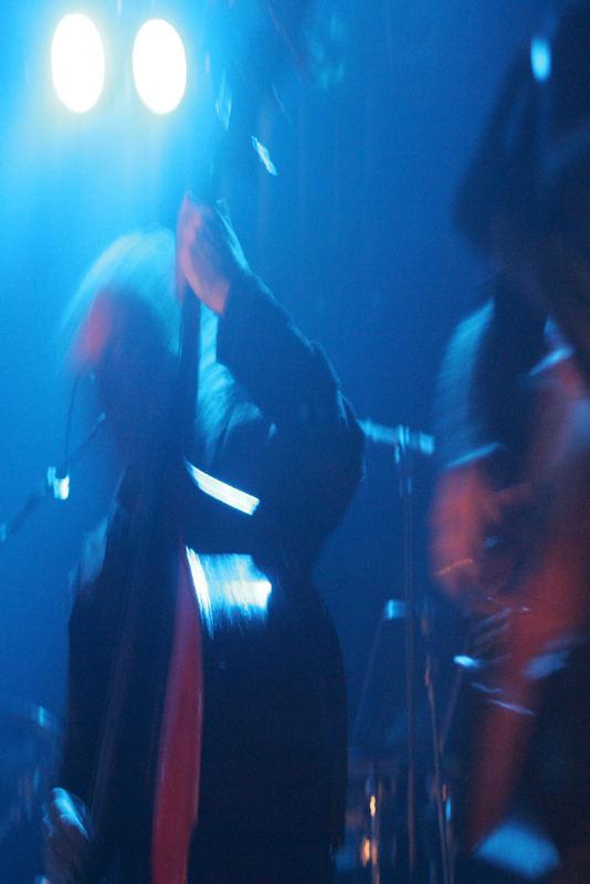 lasha in concert