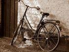 La.........solita bici