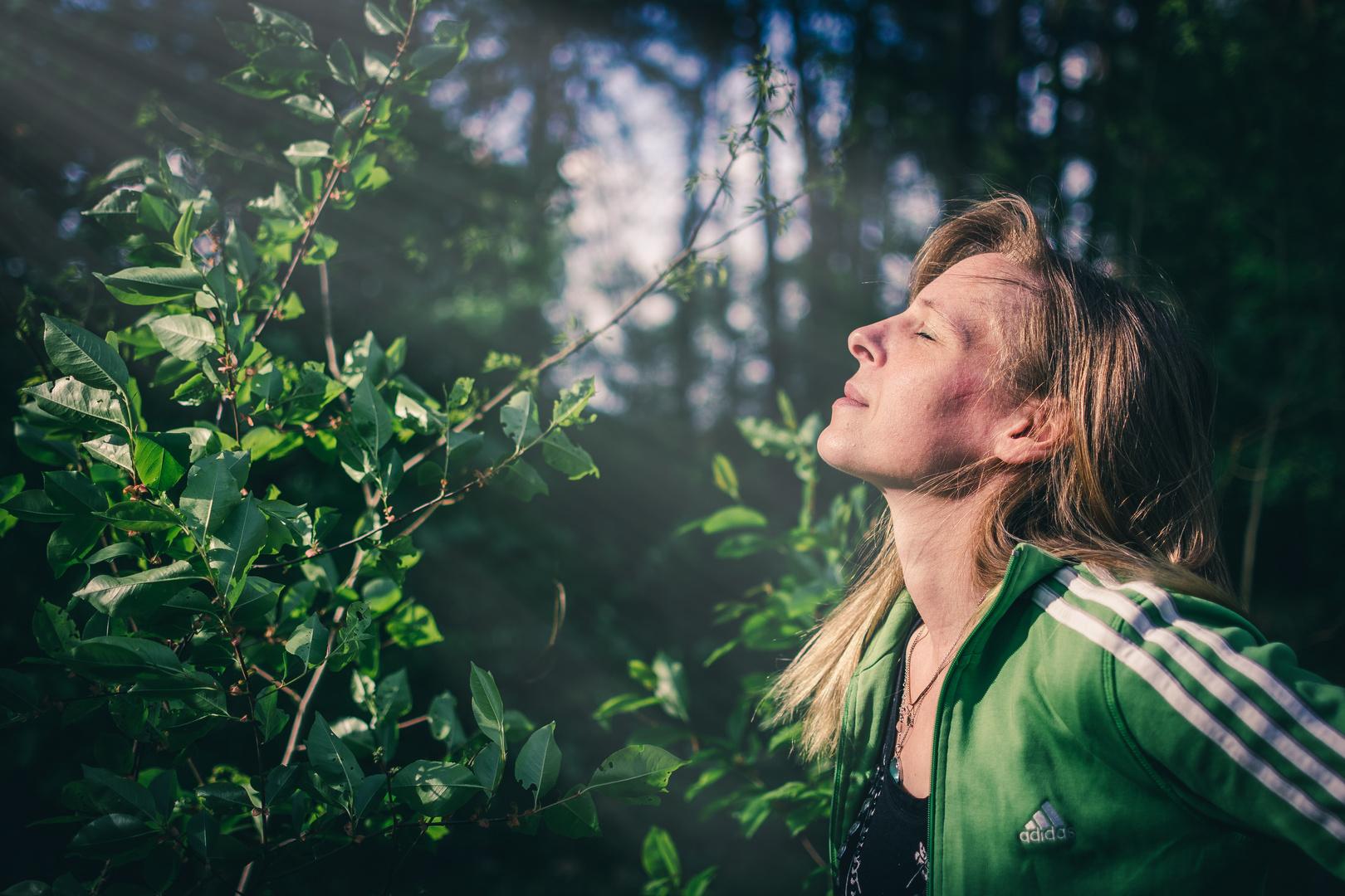 Lass die Sonne in Dein Herz...