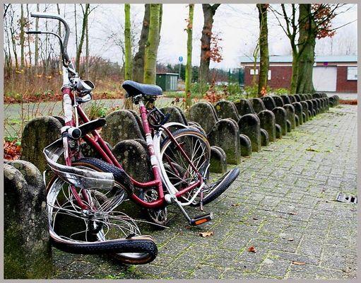 Lass uns eine Radtour machen...