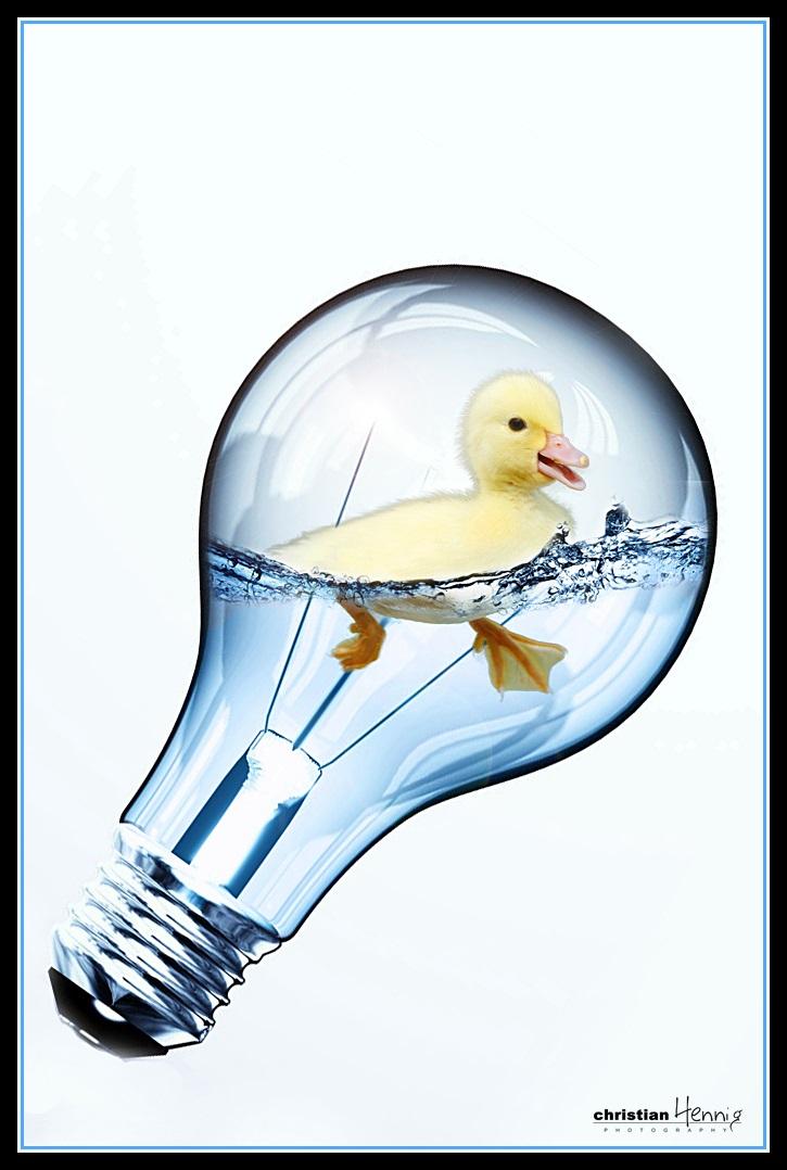 Lasst die Ente raus