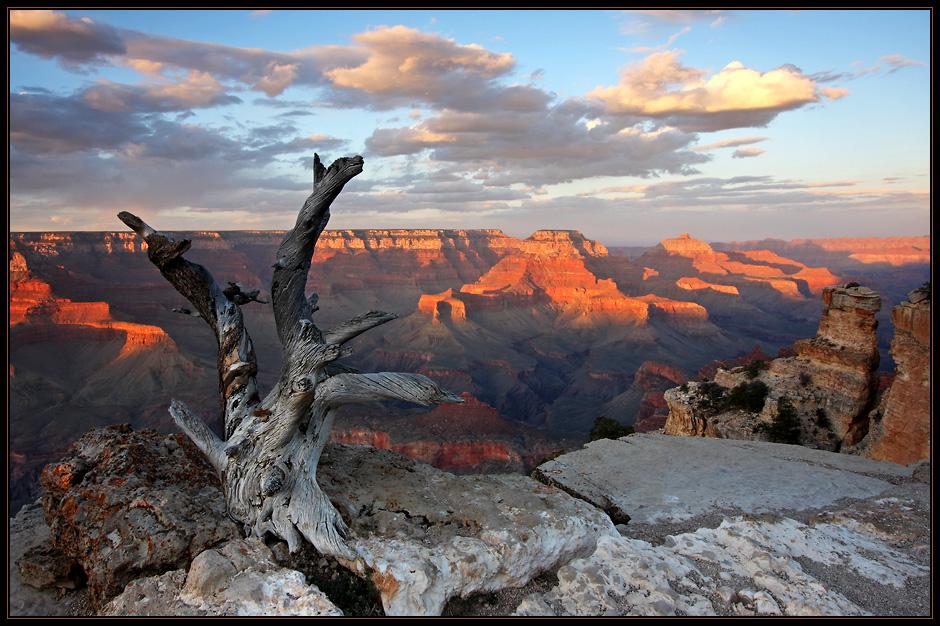 Last Light @ Grand Canyon