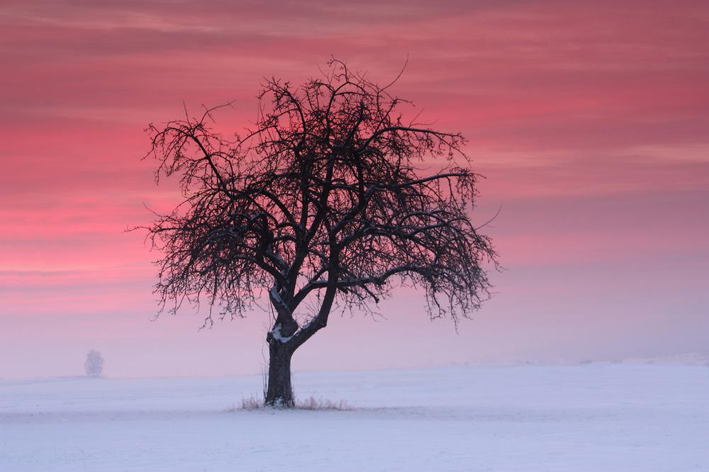 last winter...