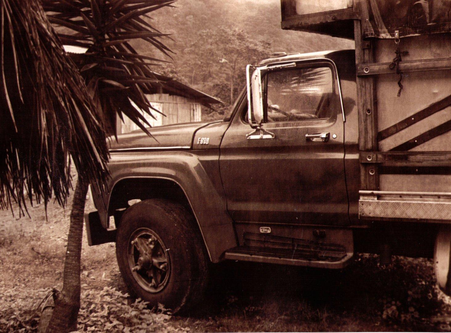 lastwagen im dschungel