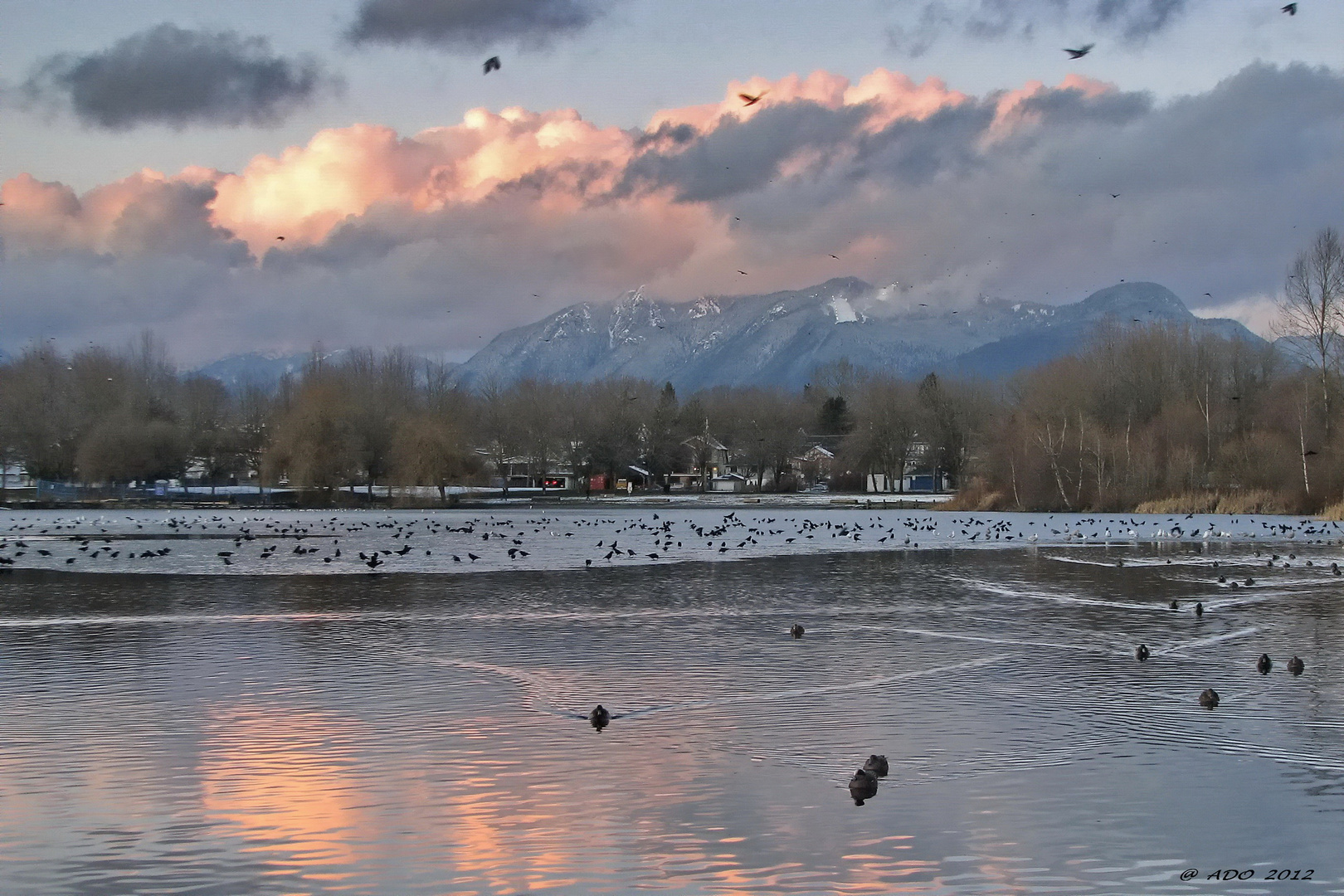 Late Afternoon at Trout Lake (2)