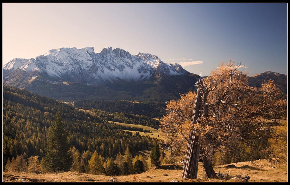 Latemar am Karerpass / Südtirol