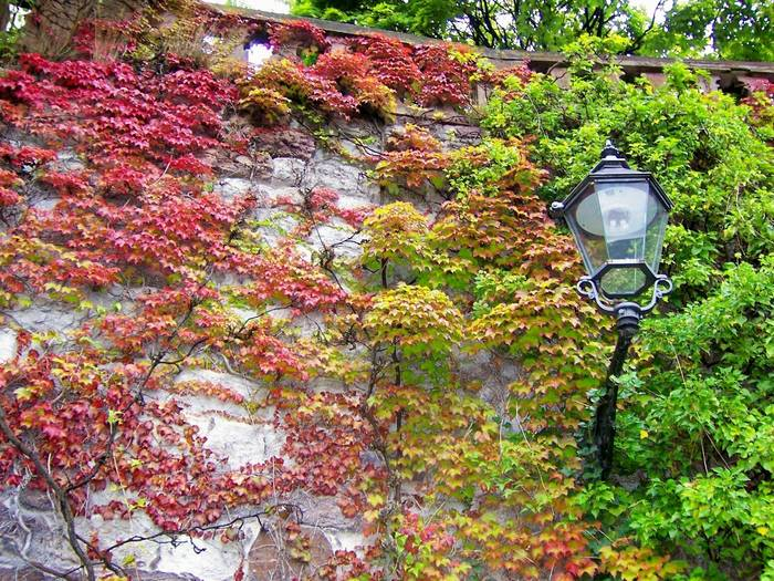 Laterne in Baden Baden