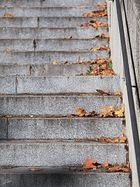 Laub an Treppe