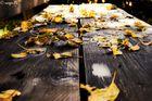Laub auf Holzbank
