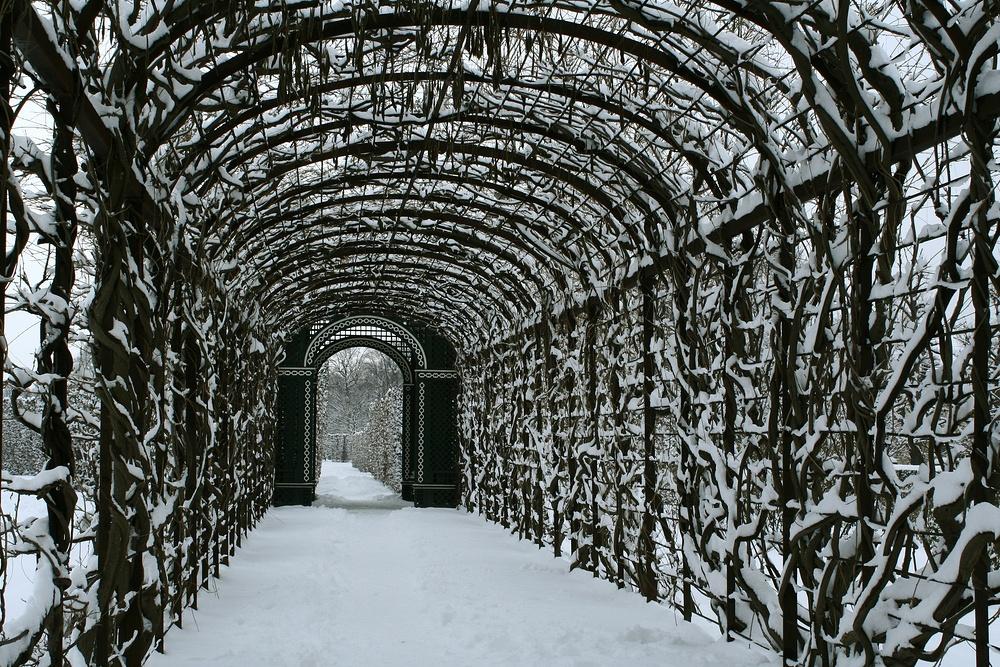 Laubengang beim Schloss Schönbrunn (begradigte Version)