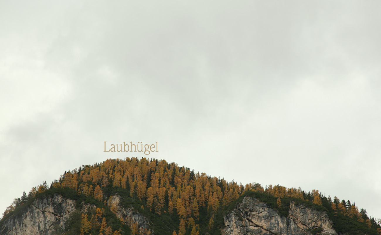 Laubhügel | hill of leaves