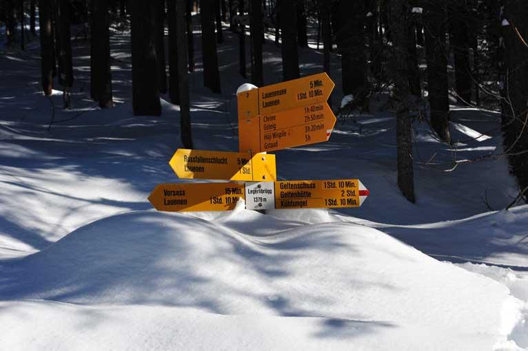 Lauenen Schneeimpressionen 10
