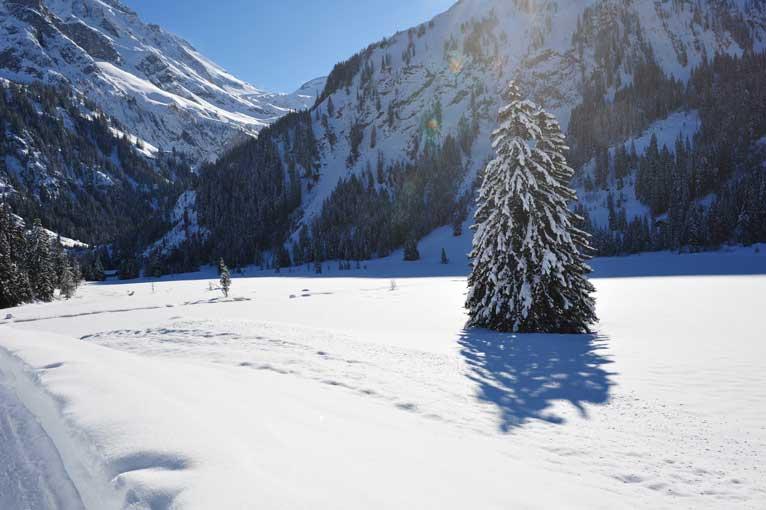 Lauenen Schneeimpressionen 2