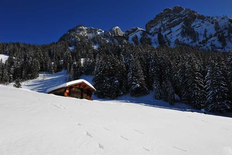Lauenen Schneeimpressionen 4