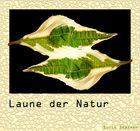 Laune der Natur