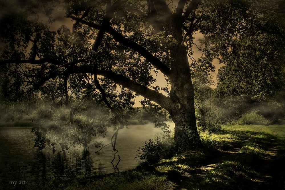 Lausitzer Teich und Seenlandschaften
