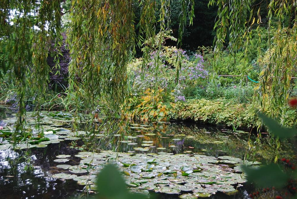 l'autaomne chez monsieur Monet