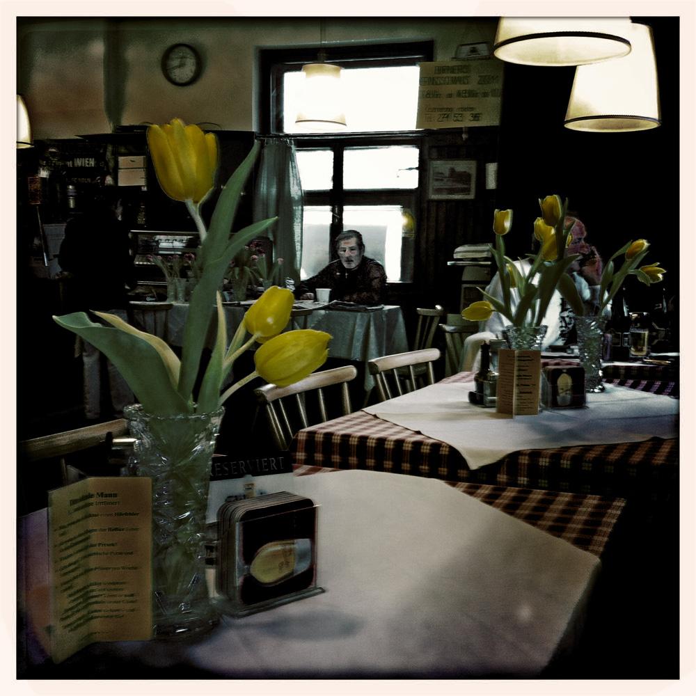 lauter gelbe Tulpen ( in einem Beisl an der alten Donau.)