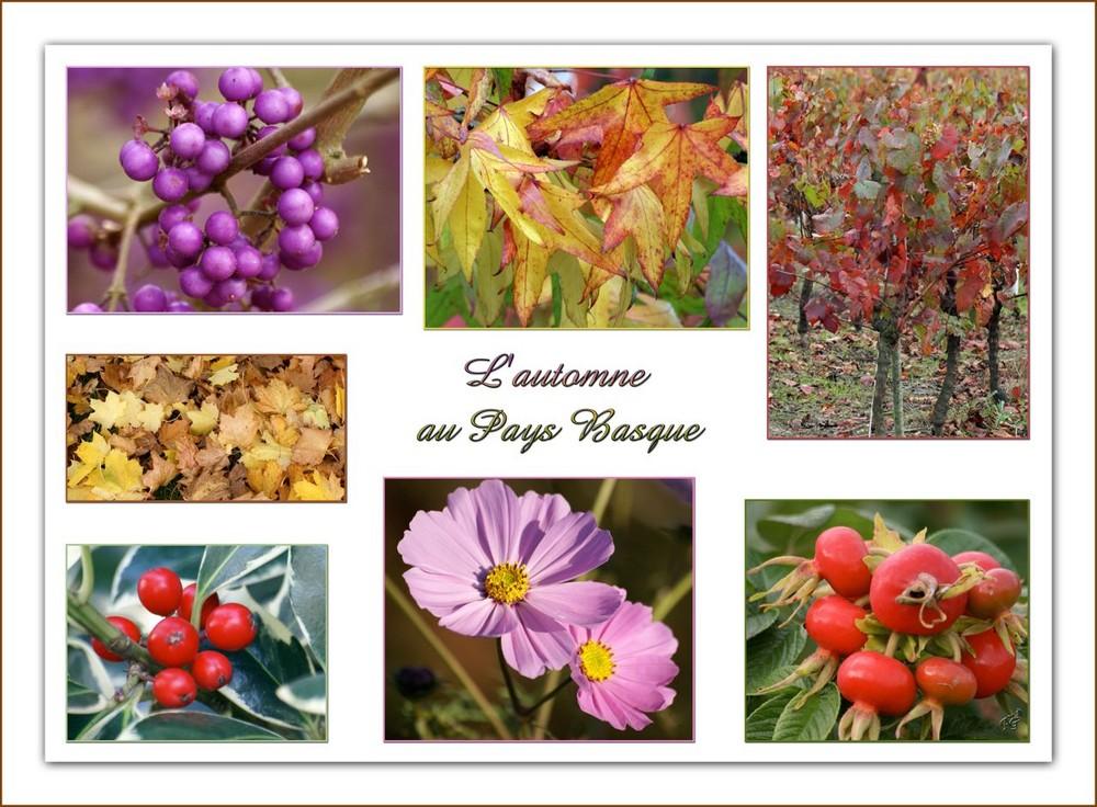 L'automne au Pays Basque