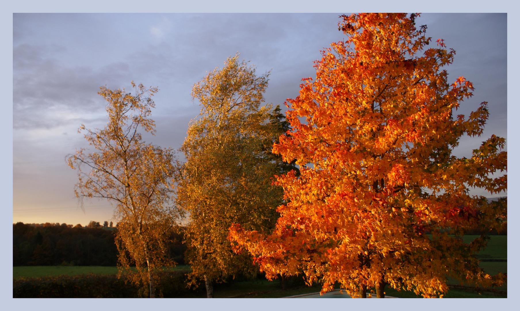 L'automne bien sûr ...