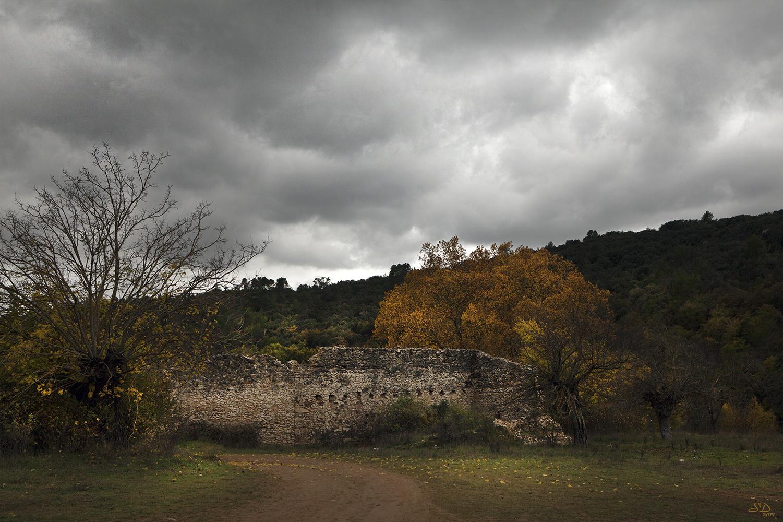 l'automne sur la vieille ferme en ruine.