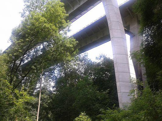 L'Autoroute A 19 vue de la forêt