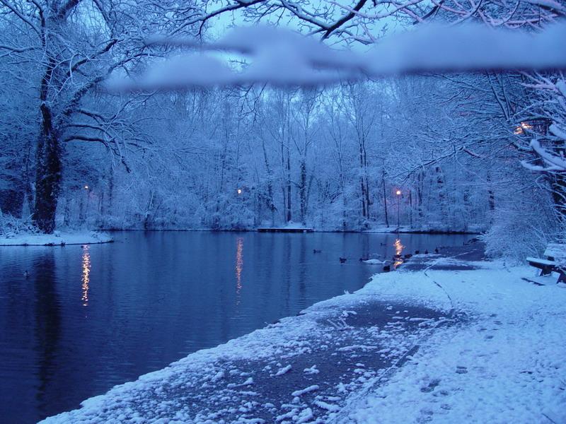 Lautre côté du lac derrière l branche