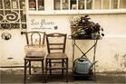 L'autre Paris - Les Fleurs