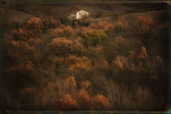 L'autunno della nostra campagna