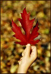 L'autunno in breve (2)