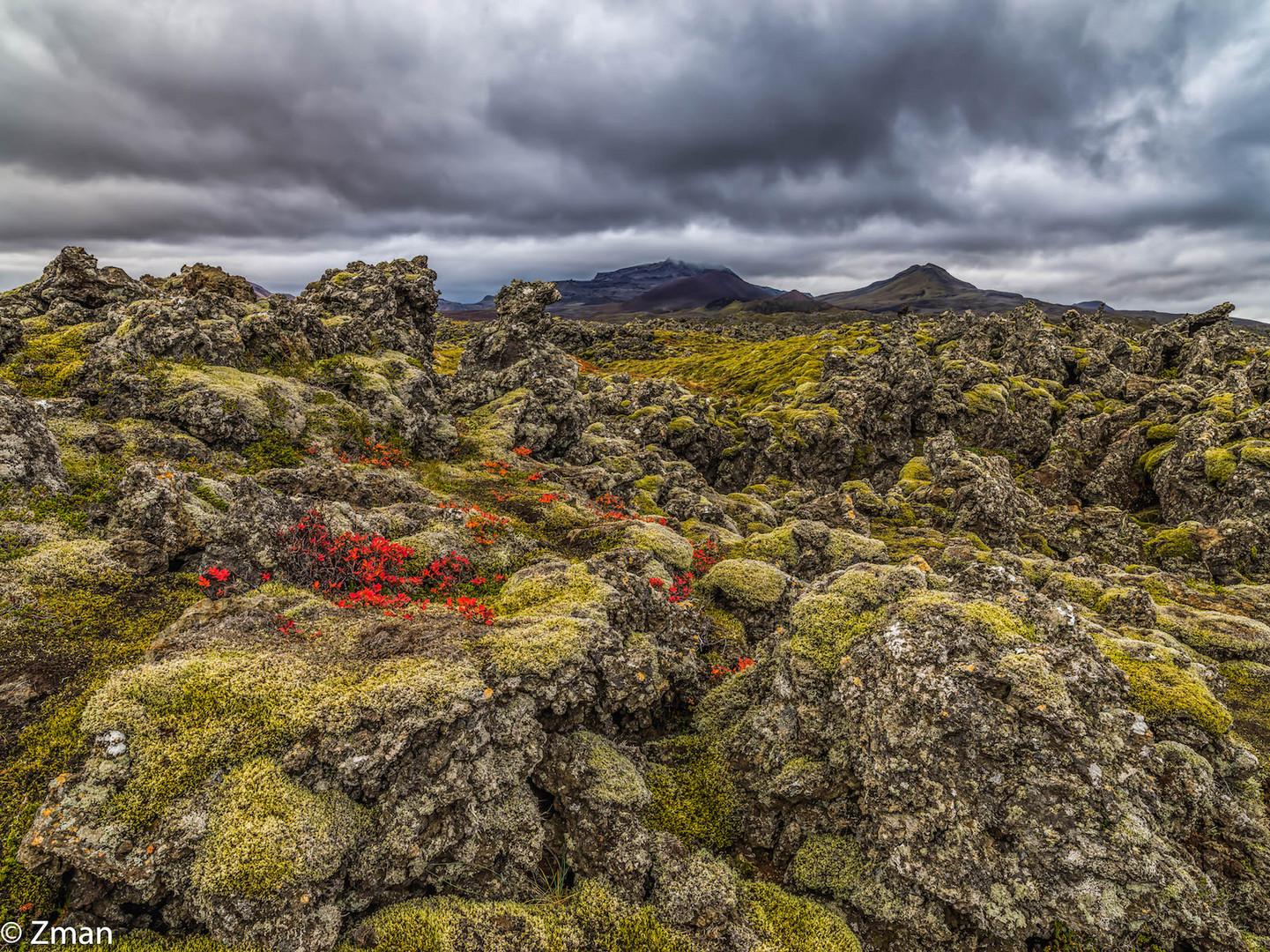 Lava Fields  B0003609