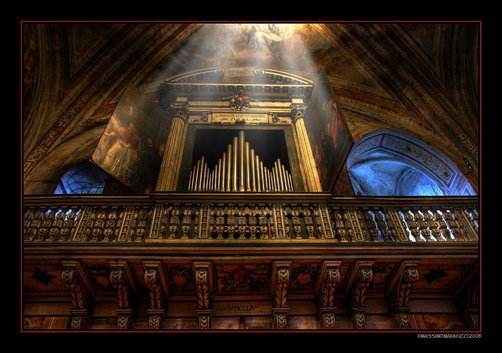 Lavdate Evm In Organo