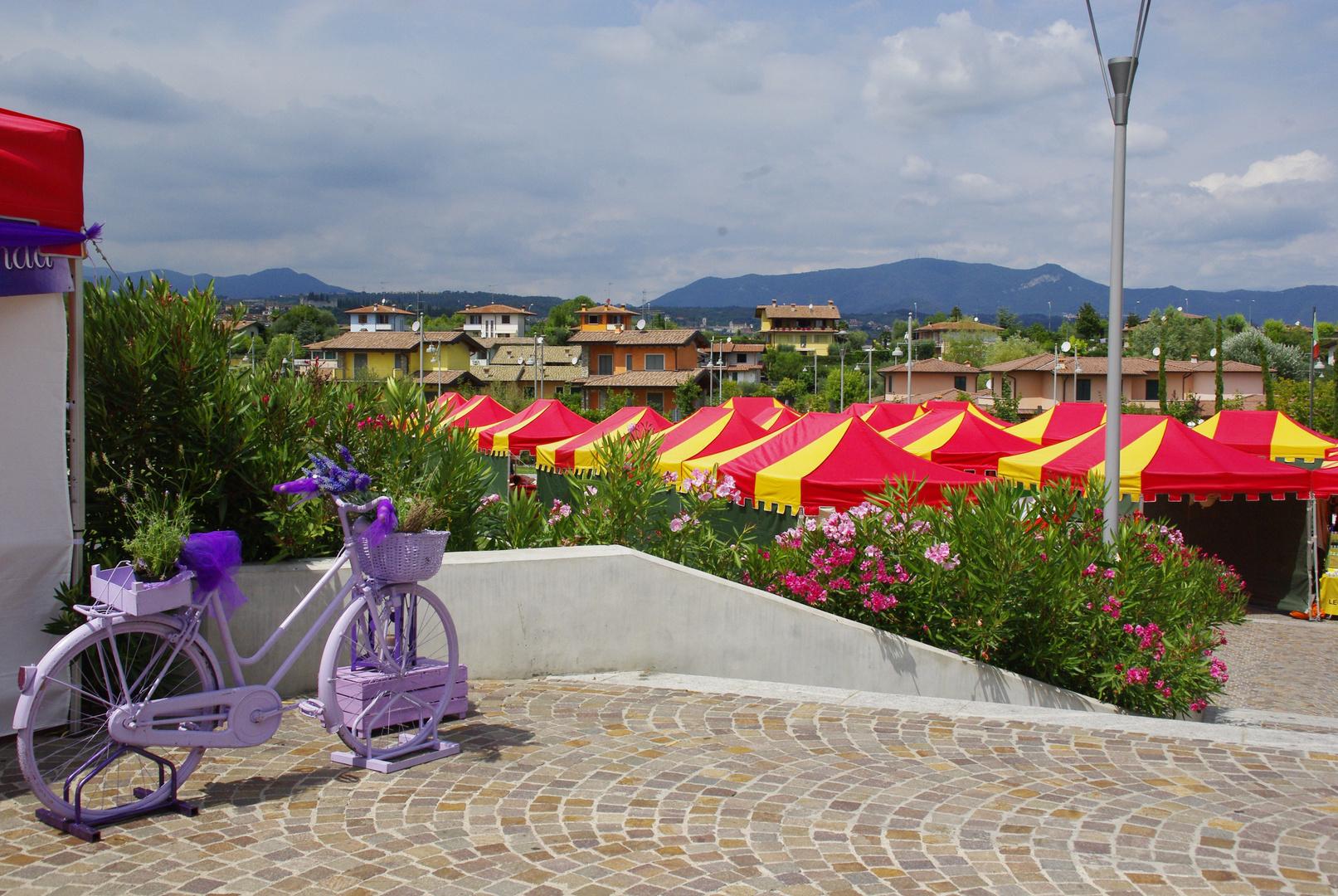 Lavendel Fahrrad