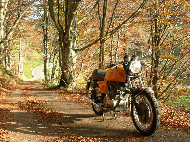 laverda sf 750 indian summer foto bild autos zweir der motorr der motorrad legenden. Black Bedroom Furniture Sets. Home Design Ideas