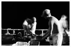 Lavorazione del tonno