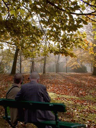 lazy autumn sunday afternoon